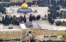 palestine_news30102014