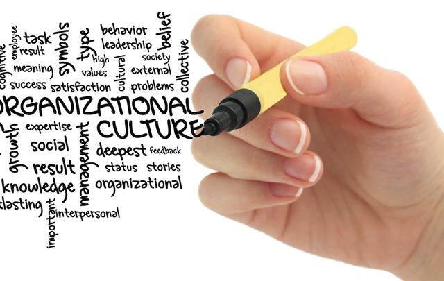 org_culturel