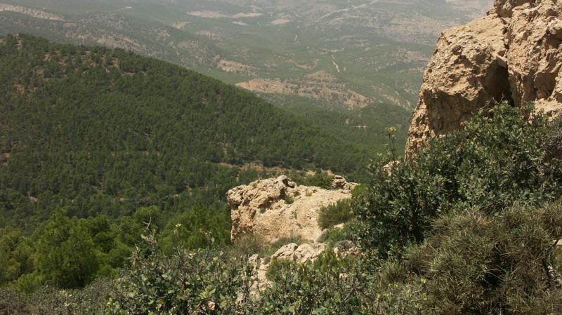 kasserine_montagne